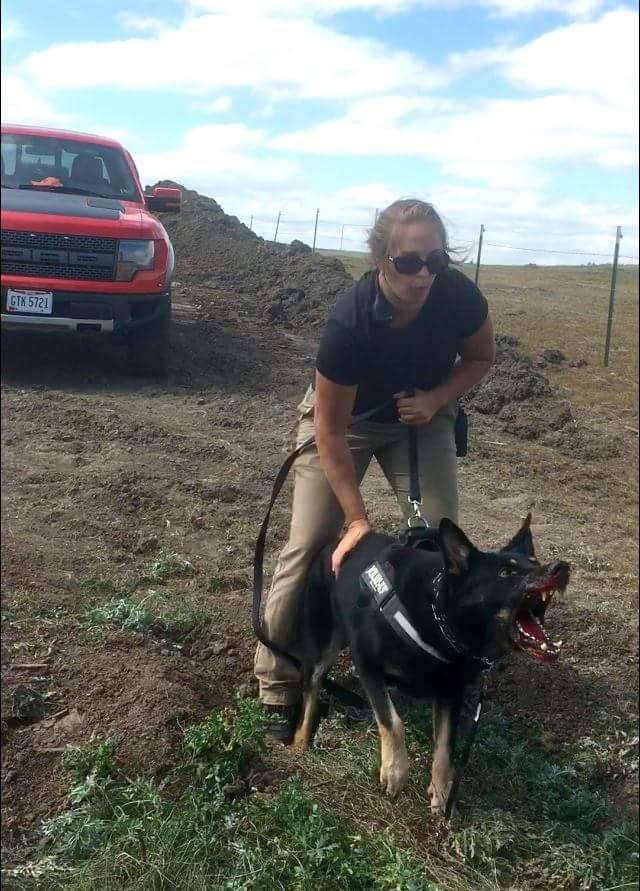 Dog_lunges_at_water_protectors